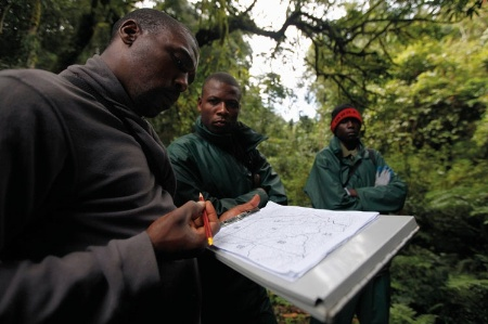 Rwandan men consulting map