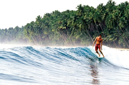 Sam Bleakley surfing alongside palm trees