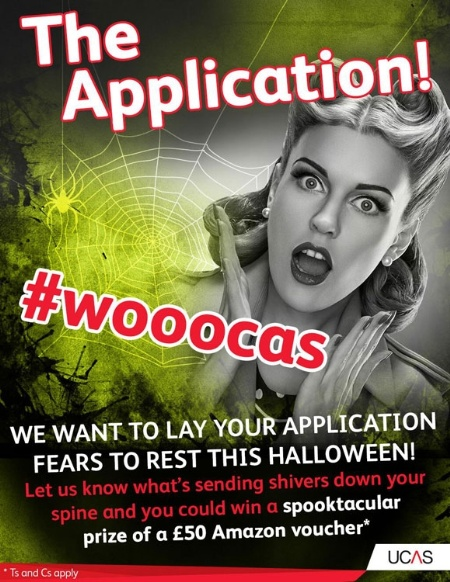 The Application poster