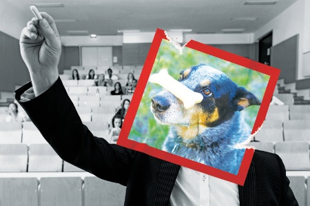 Lecturer with dog's head photo pasted over face