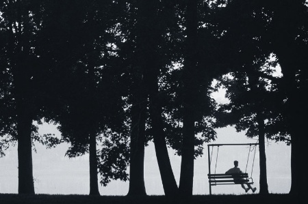 Silhouette of man sitting on chair swing, among trees