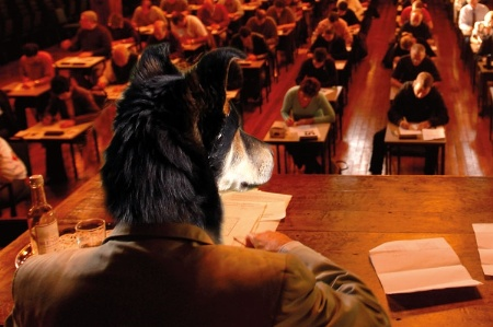 Man with dog's head overseeing exam hall