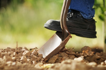 Person digging in earth with shovel
