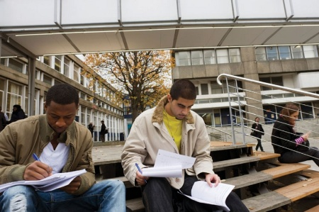 Students working on university steps