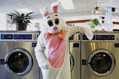 Person dressed as rabbit in launderette