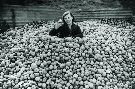 Woman in a pile of apples (B&W)