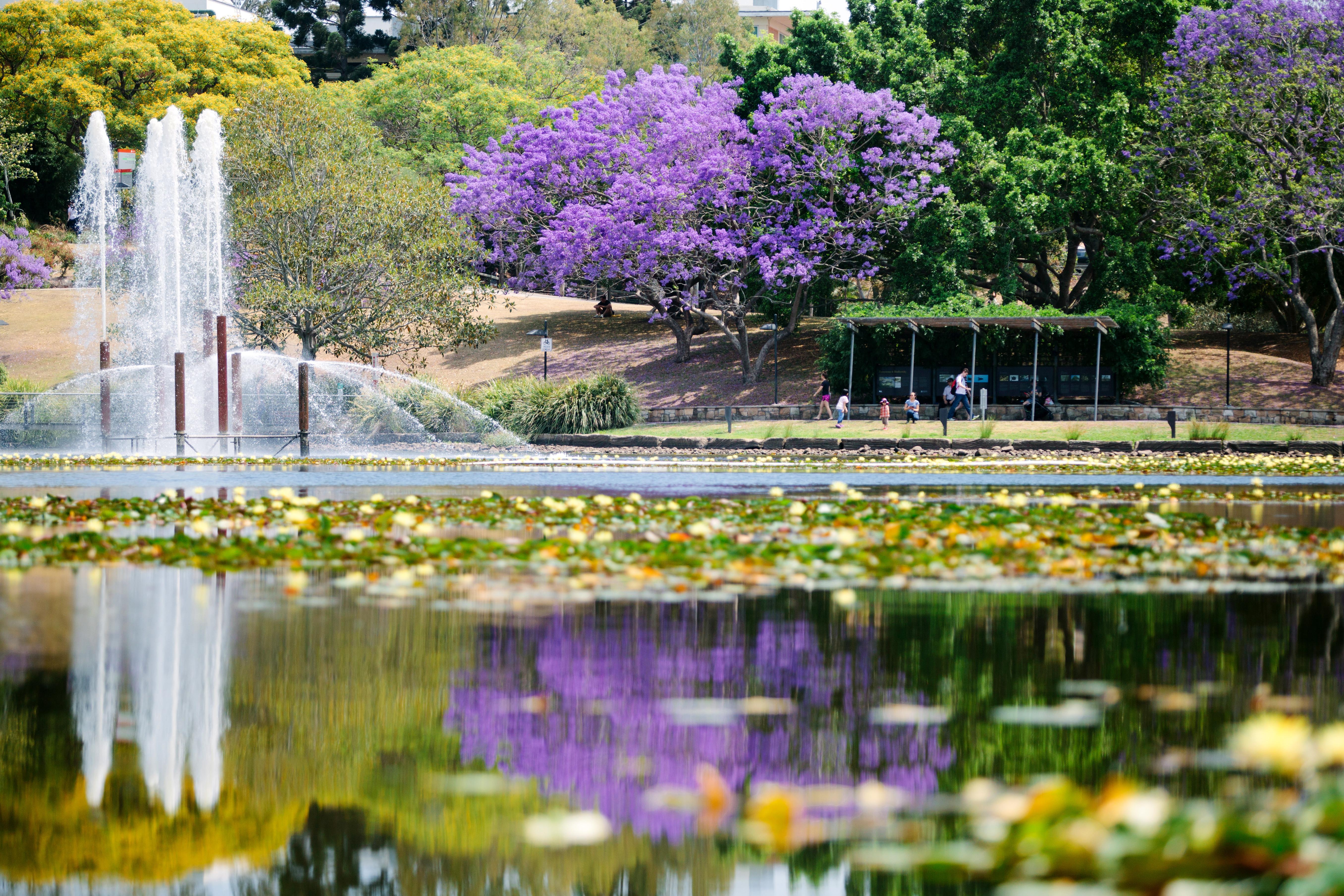 University of Queensland - most beautiful universities in Australia
