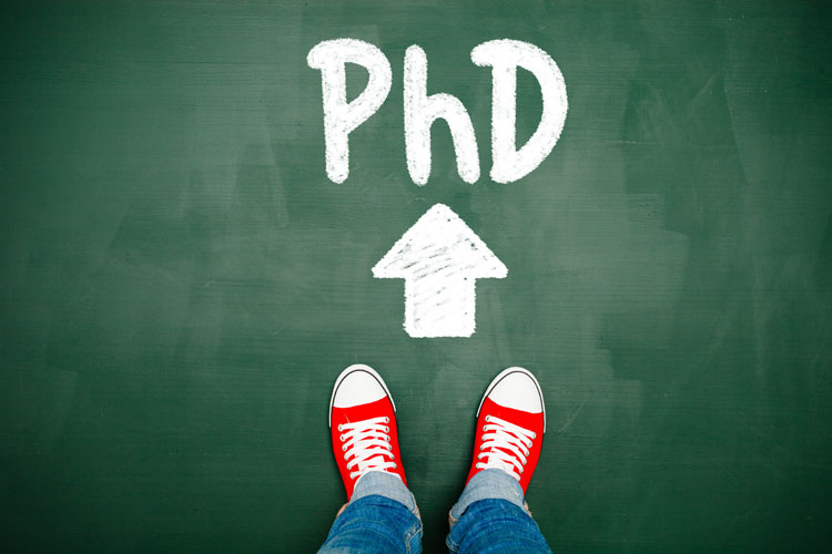 Phd blog literature review