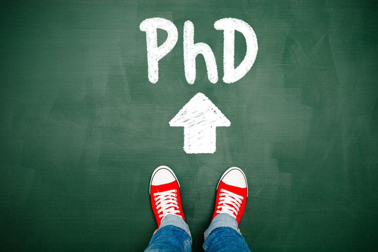 phd thesis education