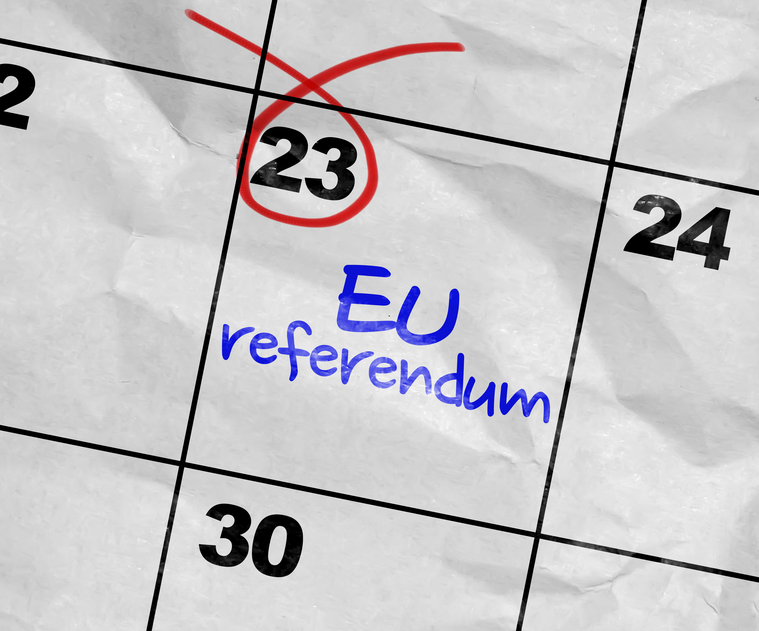 EU Referendum 23 June