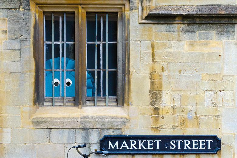 Conservative rosette behind window