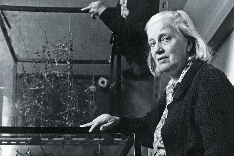 Dorothy Hodgkin, London 1973