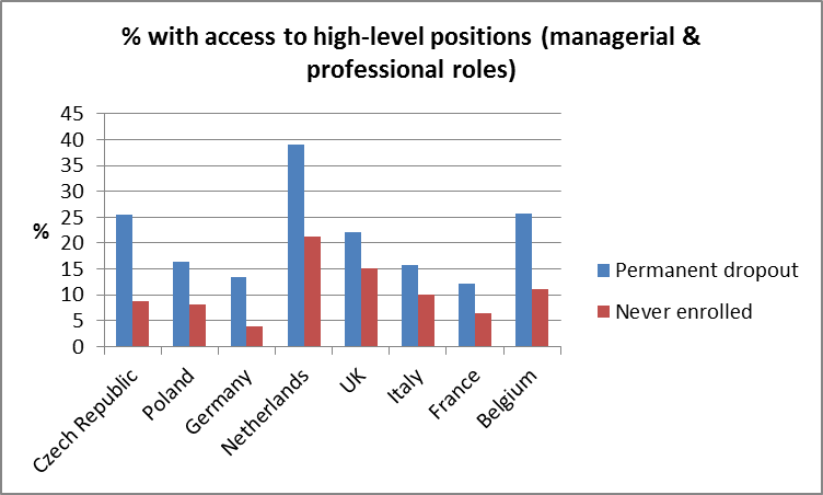 Percentage with access to high-level positions (managerial & professional roles)