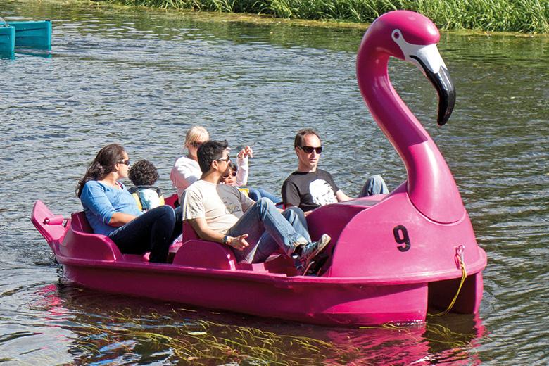 Flamingo pedalo