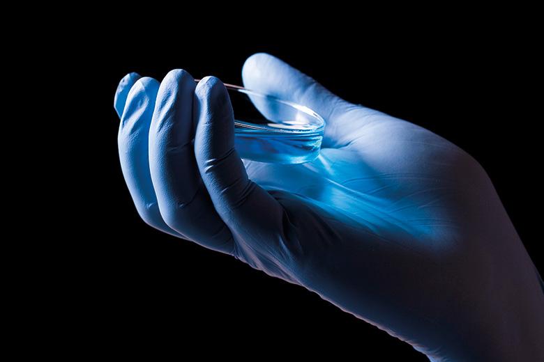 Hand holding a petri dish