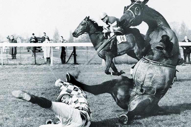 Horse racing fall