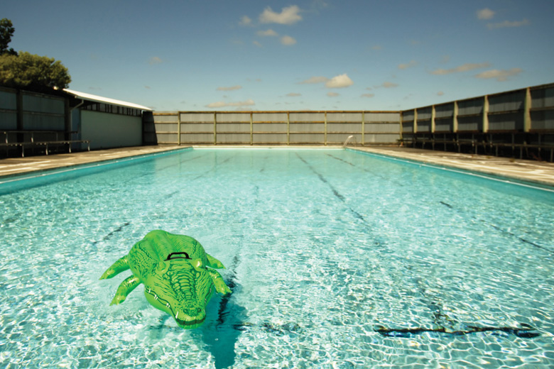 Inflatable crocodile floating in swimming pool