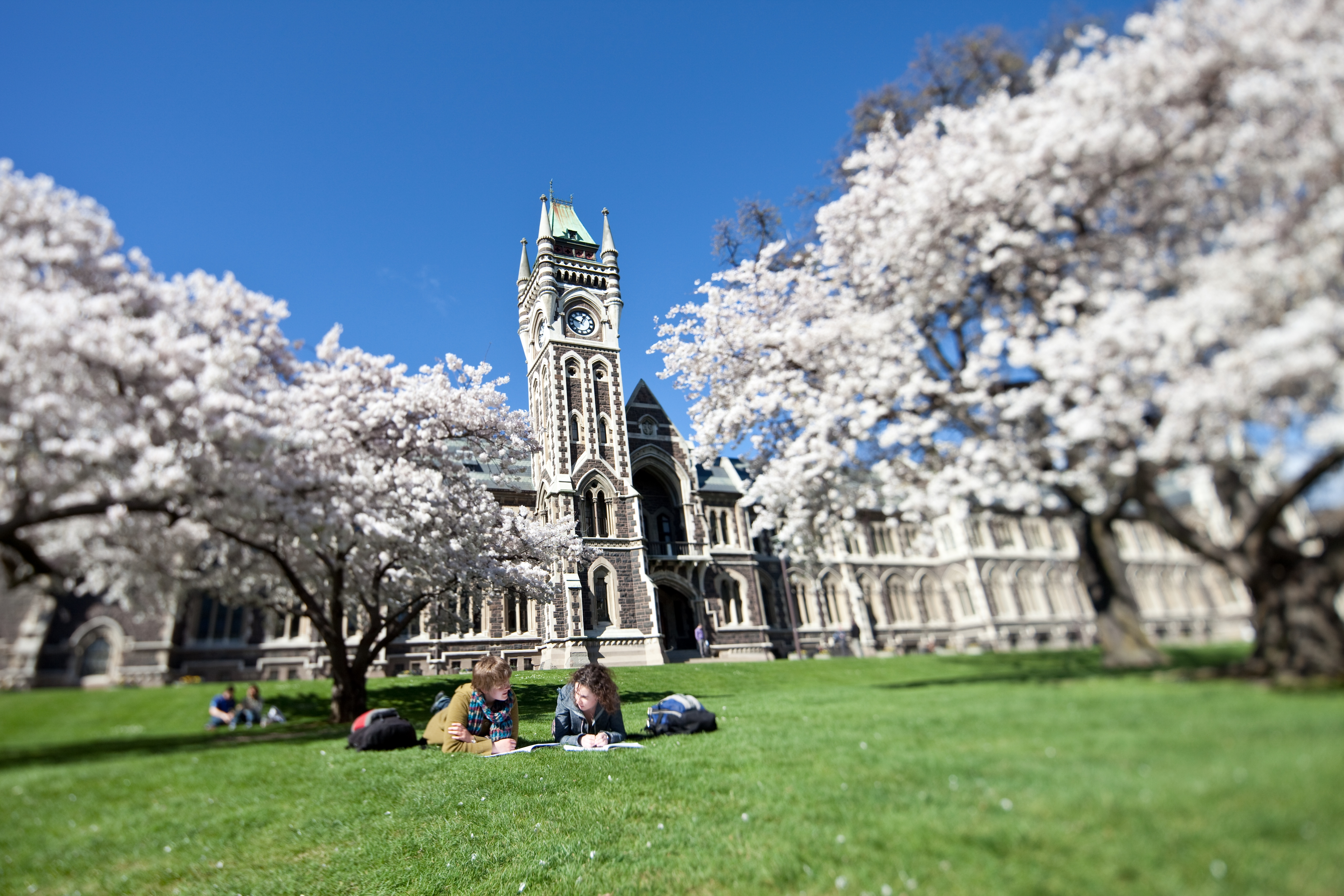 University Of Otago World University Rankings The