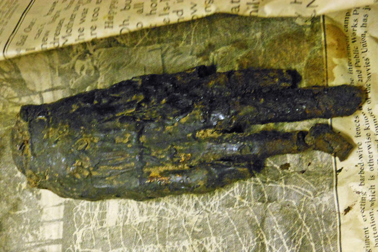 Mummified hand with broken finger