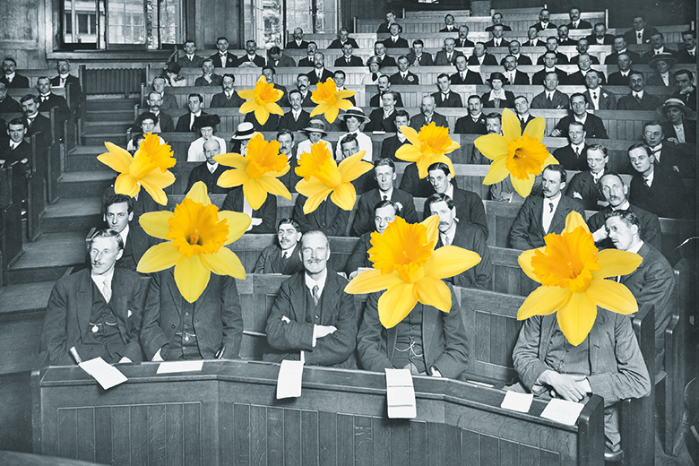 Old academics with daffodils for heads