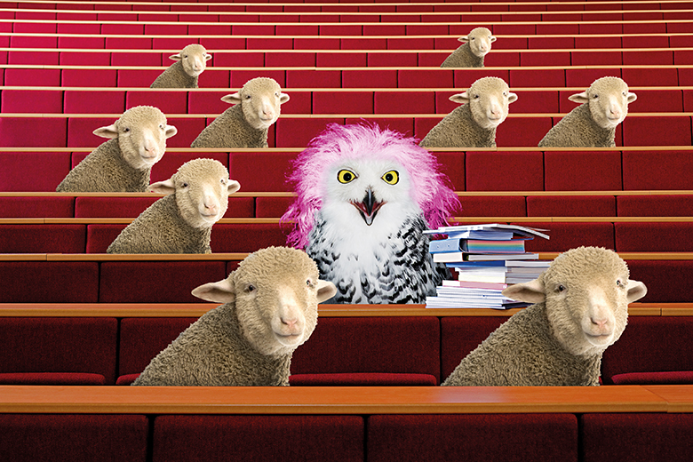 Owl and sheep in lecture theatre