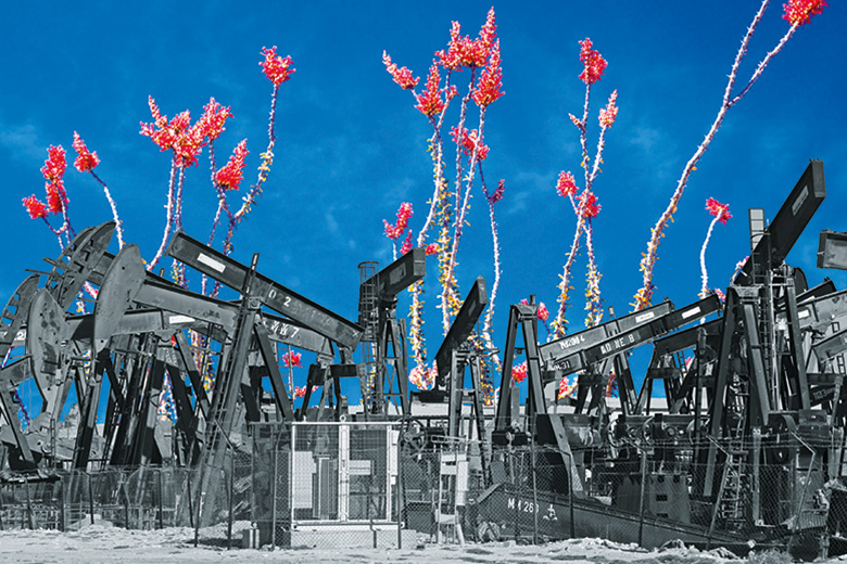 Plants growing out of oil refinery