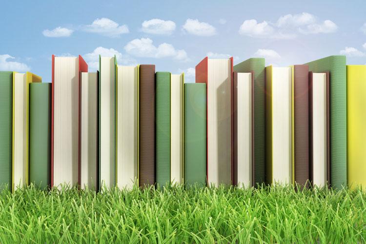 Row of hardback books on lawn
