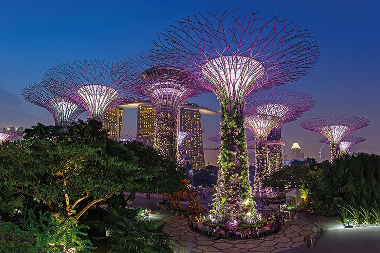 Singapore tree lights