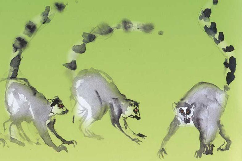 lemursgreen