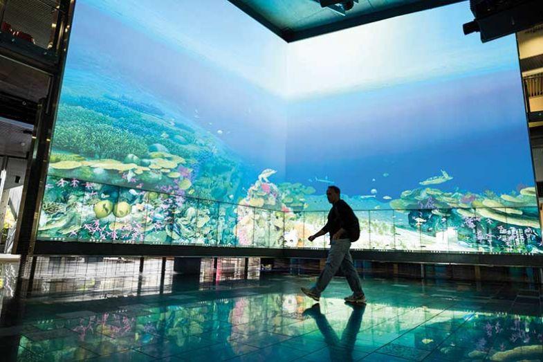 aquarian-screen-walk-past