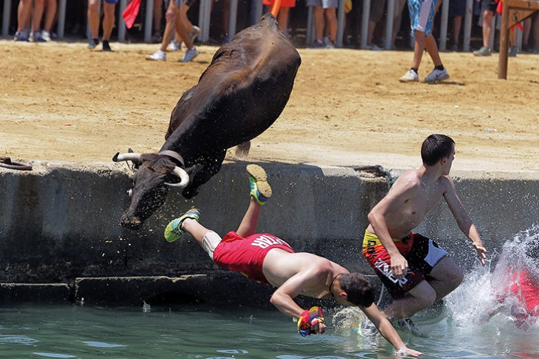 Bull chases men into water