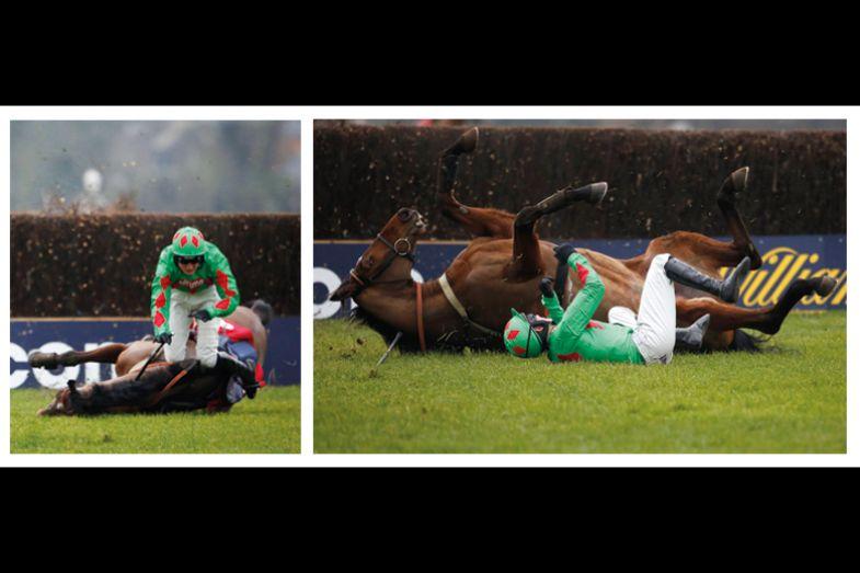 horse fallling