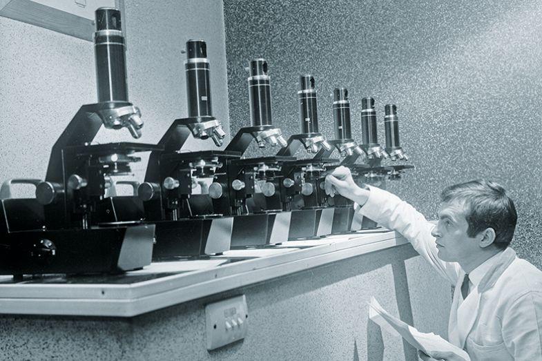 Row of microscopes