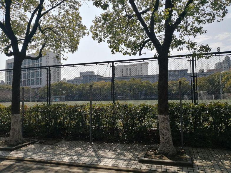 university, student, China, coronavirus, international, Shanghai