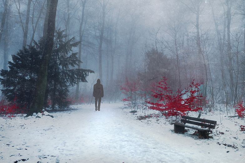 Person walking through wintry forest