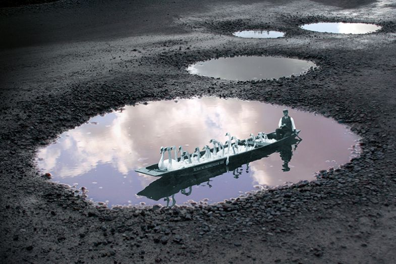 Montage of a historical picture of a man rowing a boat with swans in a puddle