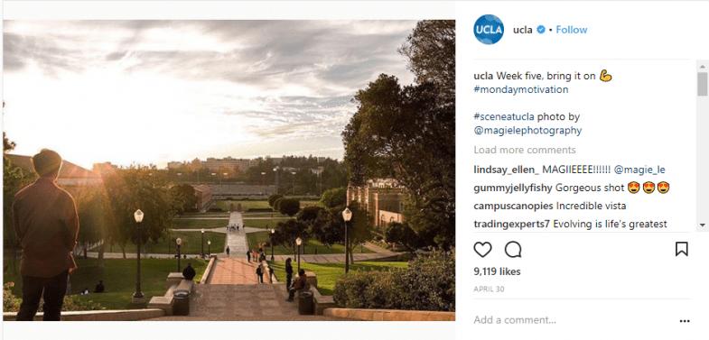 UCLA - summery university
