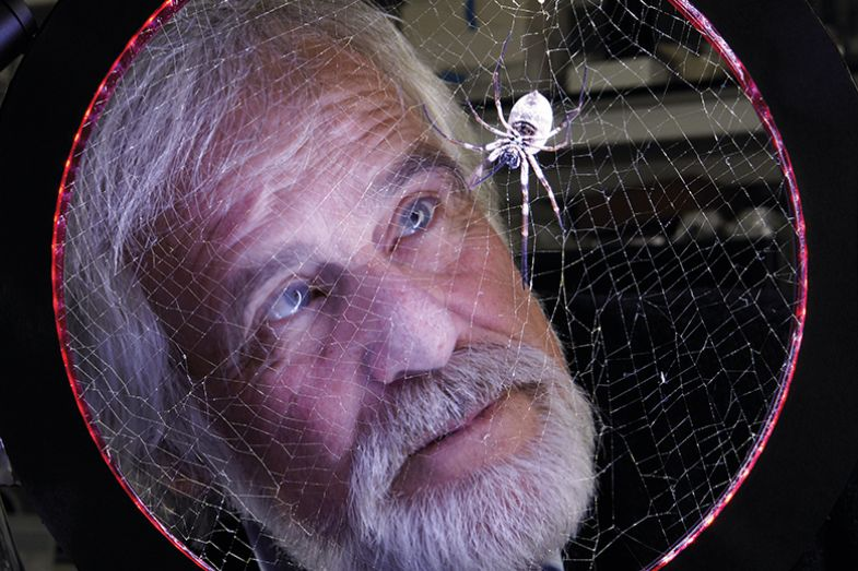 Man looking at spider web