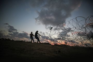 pulling barbed wire