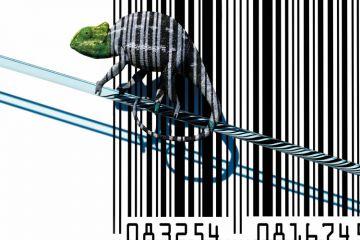 Chameleon sitting on barcode