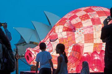 Chinese pig lantern at Sydney Opera House