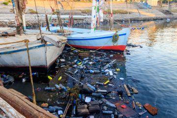 plastic pollution, climate change