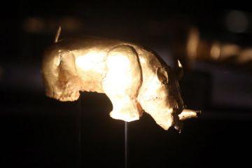The Mapungubwe Rhino