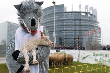 Person dressed as wolf and carrying lamb
