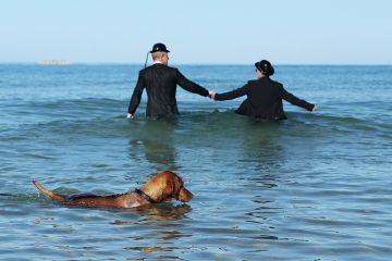 sea couple in the sea wearing business suits bowler hats holding hands dog swimming