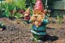 Giggling garden gnome