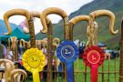 Row of prize-winning shepherds crooks and rosettes