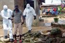 Nurses escort a man infected with the Ebola virus to a hospital