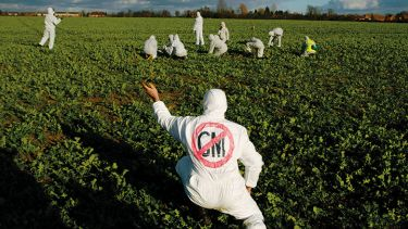 Anti-GM protesters