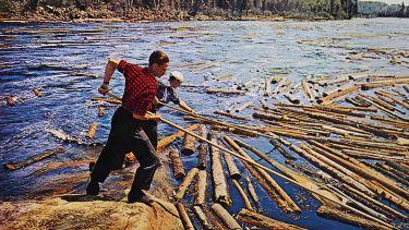Canadian loggers